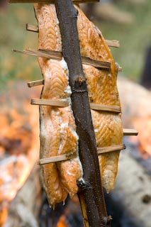 Salmon filet bakes on an alder sapling at Depoe Bay's 52nd Annual Salmon Bake.